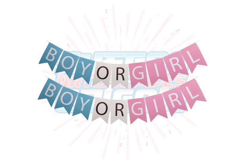 Letrero Banderín Boy Or Girl Para Revelación
